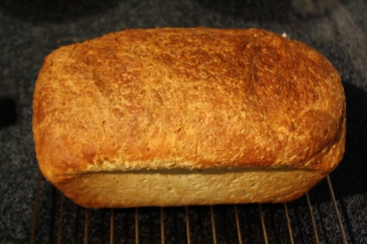 Top View of 10 Grain Bread