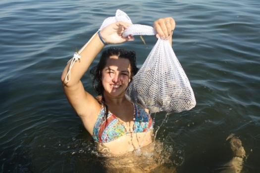 Bag of scallops